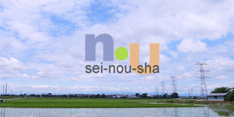 link-seinousha